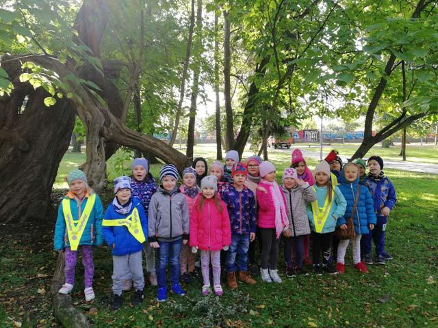 """Dzieci z grupy """"Wiewiórki"""" na słonecznym, jesiennym spacerze w parku."""